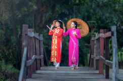 Πορτρέτο του βιετναμέζικου παραδοσιακού φορέματος κοριτσιών Στοκ εικόνα με δικαίωμα ελεύθερης χρήσης