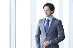 Πορτρέτο του επιχειρηματία Στοκ Φωτογραφία