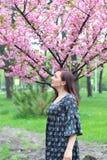 Πορτρέτο του ευρωπαϊκού θηλυκού κοντά στο ιαπωνικό ανθίζοντας δέντρο του sakura Κορίτσι ξανθών μαλλιών έξω στοκ φωτογραφίες με δικαίωμα ελεύθερης χρήσης