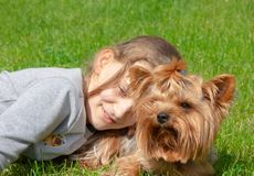 Πορτρέτο του ευτυχούς κοριτσιού και της Pet της yorkie στοκ εικόνες με δικαίωμα ελεύθερης χρήσης