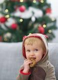 Πορτρέτο του ευτυχούς μωρού στο κοστούμι Χριστουγέννων που τρώει το μπισκότο Στοκ Φωτογραφία