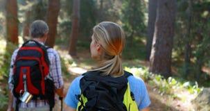 Πορτρέτο του ζεύγους οδοιπόρων που στο δάσος απόθεμα βίντεο