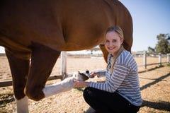 Πορτρέτο του θηλυκού που συνδέει το παπούτσι αλόγων στοκ φωτογραφία