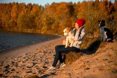 Πορτρέτο του κοριτσιού με το αστείο σκυλί κόλλεϊ συνόρων δύο στην παραλία στην παραλία κίτρινο δάσος φθινοπώρου στο υπόβαθρο στοκ φωτογραφία