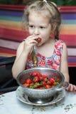 Πορτρέτο του μικρού κοριτσιού που τρώει τις κόκκινες φράουλες από το cullender Στοκ φωτογραφία με δικαίωμα ελεύθερης χρήσης