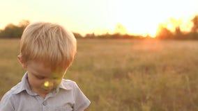 Πορτρέτο του μικρού παιδιού σε έναν τομέα στο ηλιοβασίλεμα απόθεμα βίντεο