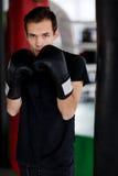 Πορτρέτο του μπόξερ με τα γάντια Στοκ φωτογραφία με δικαίωμα ελεύθερης χρήσης