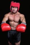 Πορτρέτο του μπόξερ με τα κόκκινα γάντια και το κάλυμμα Στοκ φωτογραφία με δικαίωμα ελεύθερης χρήσης