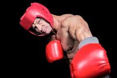 Πορτρέτο του μπόξερ με punching γαντιών στο μαύρο κλίμα Στοκ φωτογραφίες με δικαίωμα ελεύθερης χρήσης