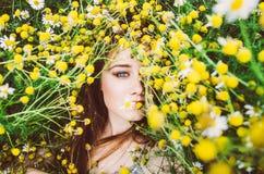 Πορτρέτο του νέου κοριτσιού στο chamomile τομέα Στοκ Εικόνες