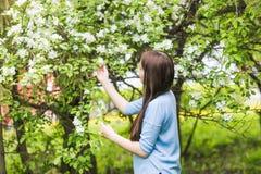 Πορτρέτο του νέου χαμόγελου γυναικών στον ανθισμένο χρόνο κήπων την άνοιξη Το δέντρο της Apple ανθίζει τα άνθη Στοκ Φωτογραφίες