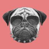 Πορτρέτο του σκυλιού μαλαγμένου πηλού με το περιλαίμιο και τα γυαλιά ηλίου διανυσματική απεικόνιση