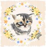 Πορτρέτο του τρεις-χρωματισμένων γατακιού και της πεταλούδας Στοκ εικόνα με δικαίωμα ελεύθερης χρήσης
