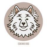 Πορτρέτο του των Εσκιμώων σκυλιού Διανυσματική απεικόνιση στο ύφος του επιπέδου Στοκ Εικόνα
