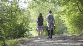 Πορτρέτο του τύπου και του νέου χαριτωμένου κοριτσιού που περπατούν ανά το δασικό ζευγάρι των ταξιδιωτών με τα σακίδια πλάτης υπα απόθεμα βίντεο