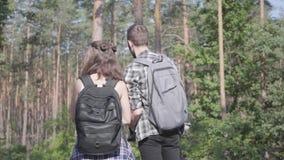 Πορτρέτο του τύπου και της νέας φίλης που περπατούν ανά το δασικό ζευγάρι των ταξιδιωτών με τα σακίδια πλάτης υπαίθρια Ζεύγη ελεύ απόθεμα βίντεο