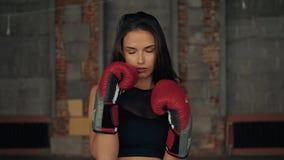 Πορτρέτο του φίλαθλου συγκεντρωμένου κοριτσιού που εγκιβωτίζει με την ομάδα στο φίλαθλο παχύ έγκαυμα πάλης γυμναστικής απόθεμα βίντεο