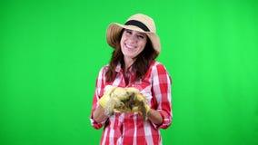 Πορτρέτο του χαμογελώντας θηλυκού αγρότη στο ελεγμένο πουκάμισο και του καπέλου, που κρατά τους σπάδικες καλαμποκιού στα χέρια, σ απόθεμα βίντεο