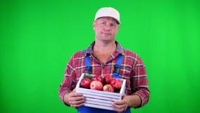 Πορτρέτο του όμορφου αρσενικού αγρότη που κρατά ένα ξύλινο κιβώτιο με τα κόκκινα ώριμα οργανικά μήλα, χαμόγελο στο πράσινο υπόβαθ απόθεμα βίντεο