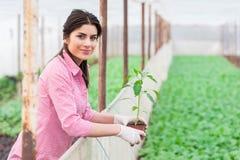Πορτρέτο του όμορφου εργαζομένου κήπων θηλυκών Στοκ Φωτογραφίες