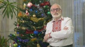 Πορτρέτο του όμορφου ηληκιωμένου στην κεντητική κοντά σε ένα χριστουγεννιάτικο δέντρο απόθεμα βίντεο