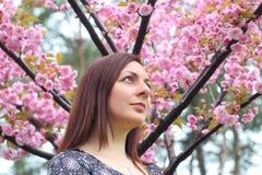 Πορτρέτο του όμορφου κοριτσιού στο δέντρο sakura Τα λουλούδια Sakura περιβάλλουν το κορίτσι Κλάδος Sakura από το πρόσωπό της στοκ φωτογραφία με δικαίωμα ελεύθερης χρήσης