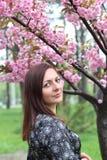 Πορτρέτο του όμορφου κοριτσιού στο δέντρο sakura Τα λουλούδια Sakura περιβάλλουν το κορίτσι Κλάδος Sakura από το πρόσωπό της Ιαπω στοκ φωτογραφία
