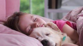 Πορτρέτο του ύπνου μικρών κοριτσιών με το κουτάβι στο κρεβάτι απόθεμα βίντεο