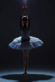Πορτρέτο του ballerina στο tatu μπαλέτου στο dack Στοκ φωτογραφία με δικαίωμα ελεύθερης χρήσης