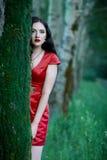 Πορτρέτο του brunette σε ένα κόκκινο φόρεμα στο δάσος Στοκ Φωτογραφίες