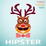 Πορτρέτο των αστείων εκλεκτής ποιότητας ελαφιών hipster με Στοκ Εικόνες