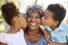 Πορτρέτο των εγγονιών που φιλούν τη γιαγιά στο πάρκο στοκ εικόνα