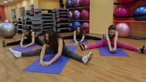Πορτρέτο των ευτυχών νέων γυναικών που κάνουν την τεντώνοντας άσκηση στη γυμναστική φιλμ μικρού μήκους