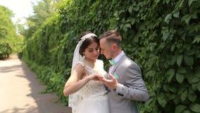 Πορτρέτο των ευτυχών newlyweds σε ένα ηλιόλουστο θερινό πάρκο απόθεμα βίντεο