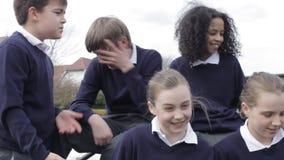 Πορτρέτο των μαθητών δημοτικού σχολείου στο πλαίσιο αναρρίχησης απόθεμα βίντεο