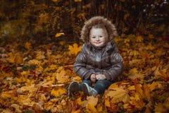 Πορτρέτο φθινοπώρου του χαριτωμένου χαμογελώντας μικρού κοριτσιού με τα φύλλα σφενδάμου στοκ φωτογραφία