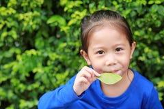 Πορτρέτο χαριτωμένο λίγου ασιατικού κοριτσιού παιδιών που φυσά ένα φύλλο στον κήπο φύσης στοκ εικόνες με δικαίωμα ελεύθερης χρήσης