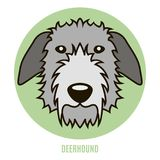 Πορτρέτο Deerhound Διανυσματική απεικόνιση στο ύφος του επιπέδου Στοκ φωτογραφία με δικαίωμα ελεύθερης χρήσης