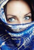 πορτρέτο Sari στοκ εικόνες με δικαίωμα ελεύθερης χρήσης