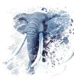 Πορτρέτο Watercolor ελεφάντων Στοκ Φωτογραφία