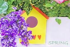 Πορφυρά ιώδη λουλούδια και κίτρινο να τοποθετηθεί κιβώτιο Έννοια άνοιξη με τα ιώδη λουλούδια στοκ εικόνες με δικαίωμα ελεύθερης χρήσης
