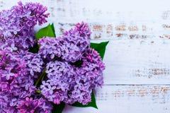 Πορφυρά ιώδη λουλούδια στο άσπρο ξύλινο υπόβαθρο στοκ φωτογραφίες με δικαίωμα ελεύθερης χρήσης