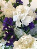 Πορφυρά και άσπρα λουλούδια στοκ εικόνα