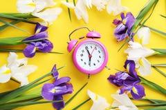 Πορφυρά και άσπρα λουλούδια ίριδων Στοκ εικόνα με δικαίωμα ελεύθερης χρήσης