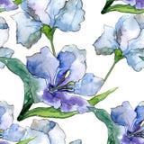 Πορφυρά και μπλε λουλούδια alstroemeria Floral βοτανικό λουλούδι Άνευ ραφής πρότυπο ανασκόπησης Στοκ φωτογραφίες με δικαίωμα ελεύθερης χρήσης