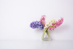 Πορφυρά και ρόδινα λουλούδια υάκινθων Στοκ Φωτογραφίες