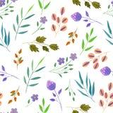 Πορφυρά λουλούδια άνοιξης και καλοκαιριού Watercolor απλά και πράσινο άνευ ραφής σχέδιο κλάδων απεικόνιση αποθεμάτων