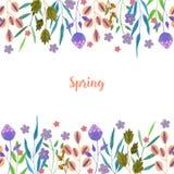 Πορφυρά λουλούδια άνοιξης και καλοκαιριού Watercolor απλά και πράσινο πρότυπο καρτών κλάδων διανυσματική απεικόνιση