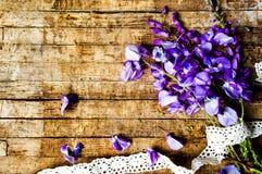 πορφυρά λουλούδια ακακιών σε έναν ξύλινο πίνακα στοκ φωτογραφίες