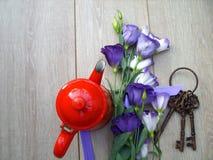 Πορφυρά λουλούδια με μια κόκκινη κατσαρόλα και τα κλειδιά στοκ εικόνα με δικαίωμα ελεύθερης χρήσης